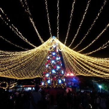 Bonnes vacances et joyeux Noël à tous