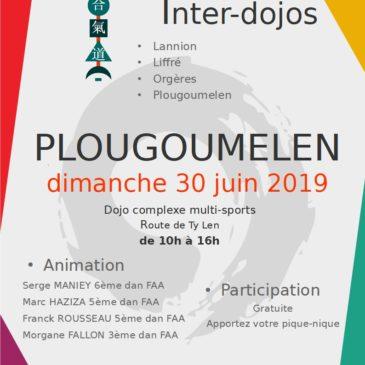 Inter-Dojos Dimanche 30 juin à Plougoumelen