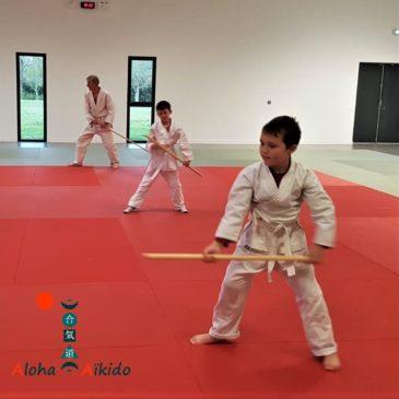 Démonstration d'aïkido à la kermesse de l'école Philippe Meirieu de Plougoumelen