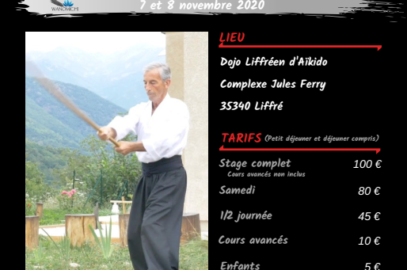affiche réduite du stage wanomichi de Daniel Toutain les 7 et 8 novembre à Liffré